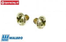 FG7375 Walbro Carburetor screw, 2 pcs