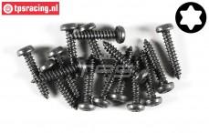 FG6916/22 Torx Pan-Head tapping screw Ø4,2-L22 mm, 15 pcs.