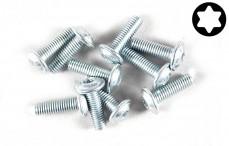 FG6917/10 Torx flange screw (M3-L10 mm), 10 pcs.