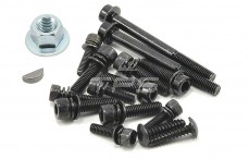 Originale LOSI Motor screw, Set